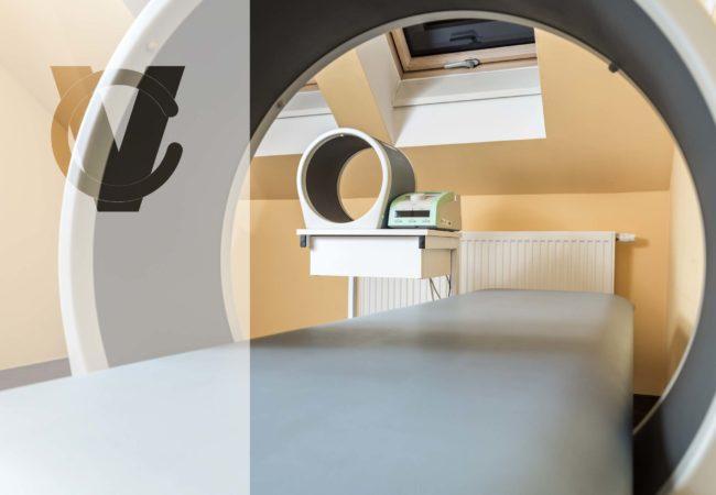 magnetoterapia 1, CM VITA, Urszulin, rehabilitacja Urszulin, Centrum Medyczne VITA